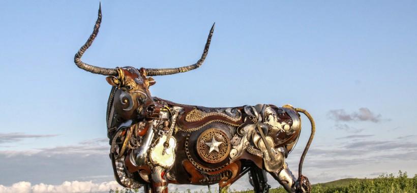 texas-longhorn-2