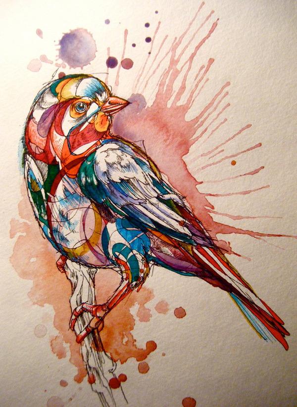 bird-41