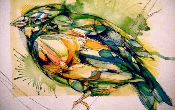 bird-5-600x450
