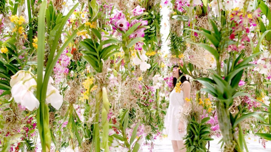 floating-flower-garden_by_teamlab_japan-1