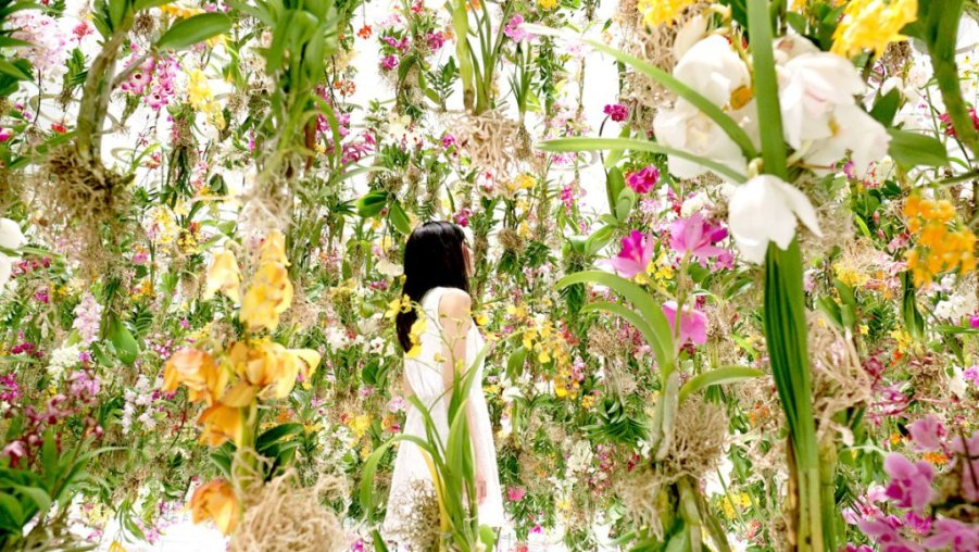floating-flower-garden_by_teamlab_japan-2