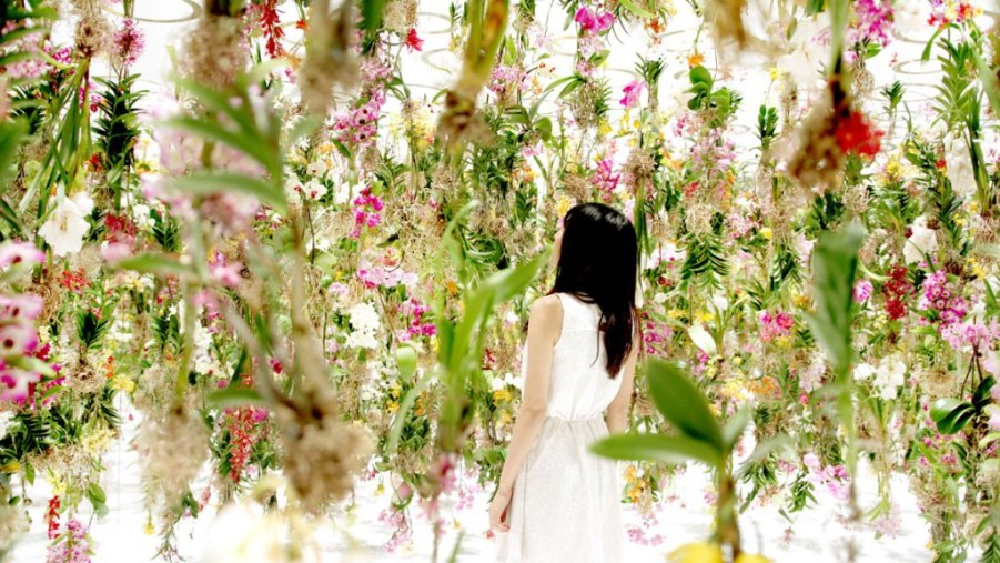 floating-flower-garden_by_teamlab_japan-7