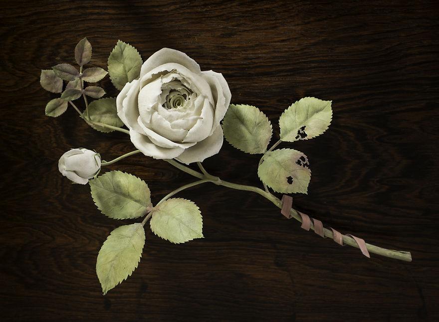 the-ukrainian-man-who-grows-porcelain-flowers-4__880